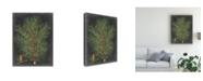 "Trademark Global Vision Studio Dramatic Pine II Canvas Art - 37"" x 49"""