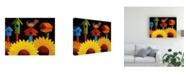 """Trademark Global Oscar Ortiz Midnight Garden Birdhouse Canvas Art - 19.5"""" x 26"""""""