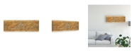 "Trademark Global Pablo Esteban Floral Beige Texture Canvas Art - 36.5"" x 48"""
