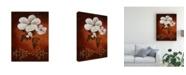"Trademark Global Pablo Esteban White Flower Shadows 2 Canvas Art - 27"" x 33.5"""