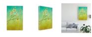 "Trademark Global Pablo Esteban White Flower Branch 2 Canvas Art - 27"" x 33.5"""