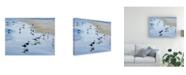 "Trademark Global Patrick Sullivan Many Birds Canvas Art - 27"" x 33.5"""