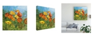 "Trademark Global Danhui Nai Summer Field IV Canvas Art - 15.5"" x 21"""