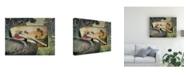 "Trademark Global Steve Hunziker Pelican Paradise I Canvas Art - 36.5"" x 48"""