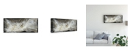 "Trademark Global Lila Bramma Transmutation VI Canvas Art - 15.5"" x 21"""
