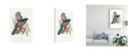 "Trademark Global John Gould Tropical Trogons III Canvas Art - 36.5"" x 48"""