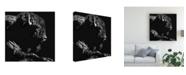 """Trademark Global Julie Chapman Just Chillin Buffalo Canvas Art - 15.5"""" x 21"""""""