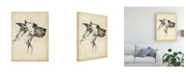 "Trademark Global Ethan Harper Breed Studies IV Canvas Art - 27"" x 33.5"""