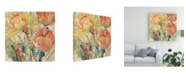 "Trademark Global Tim OToole Spring Tulip Array I Canvas Art - 36.5"" x 48"""