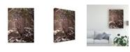 "Trademark Global PH Burchett Owl in the Snow I Canvas Art - 36.5"" x 48"""
