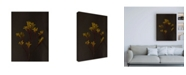 "Trademark Global Renee W. Stramel Dark & Dreamy IV Canvas Art - 19.5"" x 26"""