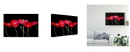 "Trademark Global Sandra Iafrate Dramatic Poppies Canvas Art - 15"" x 20"""