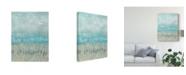 "Trademark Global Jennifer Goldberger Coastline Abstraction I Canvas Art - 15"" x 20"""