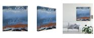 "Trademark Global Sharon Gordon Origin Abstract VI Canvas Art - 20"" x 25"""