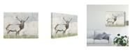 "Trademark Global Jennifer Goldberger Wild Call II Canvas Art - 20"" x 25"""