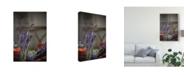 "Trademark Global Christine Sainte-Laudy Lavender Bunches Canvas Art - 15"" x 20"""