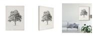 "Trademark Global Ethan Harper Vintage Arbor Study I Canvas Art - 15"" x 20"""