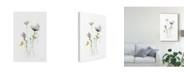 "Trademark Global June Erica Vess Stem Illusion I Canvas Art - 37"" x 49"""