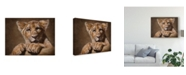 "Trademark Global Patrick Lamontagne Lion Cub Canvas Art - 20"" x 25"""