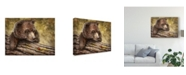 "Trademark Global Patrick Lamontagne Kodiak Cub Canvas Art - 37"" x 49"""