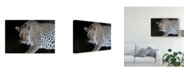 "Trademark Global Pip Mcgarry Night Stalker Canvas Art - 20"" x 25"""