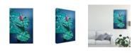 "Trademark Global Philippe Sainte-Laudy Circle Seven Canvas Art - 37"" x 49"""