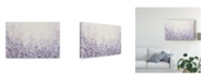 "Trademark Global Tim Otoole Soft Focus II Canvas Art - 20"" x 25"""