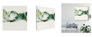 """Trademark Global Sisa Jasper Ua Ch Green Terrain II Canvas Art - 15"""" x 20"""""""