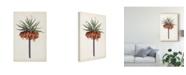 """Trademark Global Curtis Curtis Garden Beauties II Canvas Art - 20"""" x 25"""""""