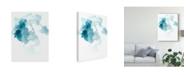 "Trademark Global June Erica Vess Thermae I Canvas Art - 20"" x 25"""