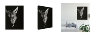 "Trademark Global Julie T. Chapman Black Glimpse VI Canvas Art - 20"" x 25"""