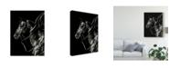 """Trademark Global Julie T. Chapman Scratchboard Rodeo V Canvas Art - 15"""" x 20"""""""