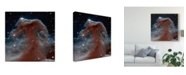 """Trademark Global Unknown Space Photography IX Canvas Art - 15"""" x 20"""""""