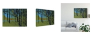 "Trademark Global Paul Bailey Forest Brook Canvas Art - 15"" x 20"""