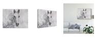 "Trademark Global Irena Orlov Dapple Horse I Canvas Art - 20"" x 25"""