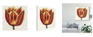 "Trademark Global Vision Studio Tulip Garden IV Canvas Art - 15"" x 20"""