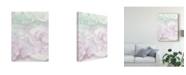 "Trademark Global Renee W. Stramel Centauri I Canvas Art - 20"" x 25"""