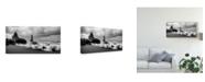 "Trademark Global Danny Head Black Sands Canvas Art - 20"" x 25"""