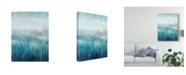 "Trademark Global Tim Otoole Above the Mist I Canvas Art - 37"" x 49"""