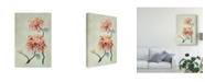 "Trademark Global Natasha Chabot Chrysanthemum Beauty I Canvas Art - 20"" x 25"""