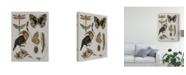 "Trademark Global Melissa Wang Nature Studies I Canvas Art - 20"" x 25"""