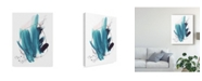 "Trademark Global Jennifer Paxton Parker Century Plant I Canvas Art - 15"" x 20"""