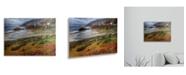 "Trademark Global Pierre Leclerc Bigsur California Floating Brushed Aluminum Art - 22"" x 25"""