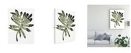 "Trademark Global June Erica Vess Foliage Fossil V Canvas Art - 37"" x 49"""