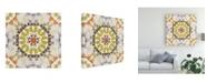 "Trademark Global June Erica Vess Driftwood Mandala III Canvas Art - 20"" x 25"""