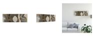 "Trademark Global John Butler Cedar Round II Canvas Art - 37"" x 49"""