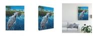 "Trademark Global Carolee Vitaletti Peaceful Heron I Canvas Art - 20"" x 25"""
