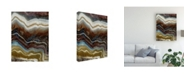 "Trademark Global John Butler Mineral Spirit I Canvas Art - 37"" x 49"""