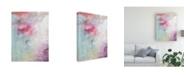 """Trademark Global Julia Contacessi Pastel Terrain I Canvas Art - 20"""" x 25"""""""