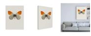 """Trademark Global Incado Agrias amydon Canvas Art - 15.5"""" x 21"""""""